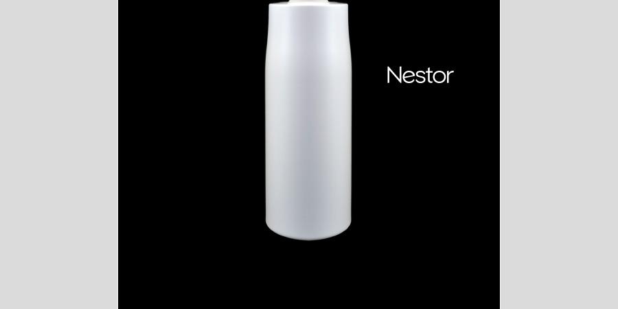 nestorDBE